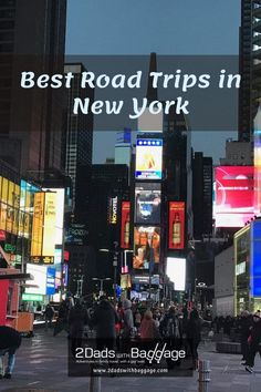 Best Road Trips in New York - 2 Dads with Baggage Best Vacation Destinations, Best Vacation Spots, Best Places To Travel, Best Vacations, Vacation Trips, Travel With Kids, Family Travel, Cruises, Baggage