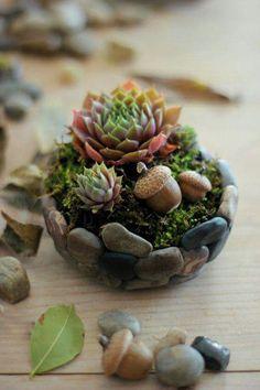 Pebbles glued together to make succulent basket