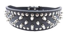 2 inch Leather Studded Collar