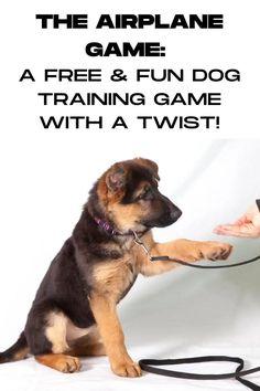 Dog Training Treats, Dog Training Videos, Best Dog Training, Brain Training, Positive Dog Training, Free Training, Potty Training, Free Puppies, Games For Puppies