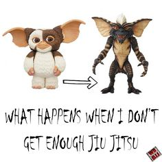 You wouldn't like me without Jiu Jitsu #BJJ #JiuJitsu #BrazilianJiuJitsu…