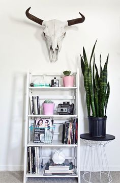 Stand Out Style   Ladder Shelf