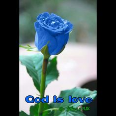 """""""Does not know God, because God is love."""" 1 John 4:8  The Bible says God is love. It doesn't say Godhaslove; it says Godislove. Love is his nature.God is love.God created the entire universe. He created this planet; he created the human race; then, he created you because helovesyou. God created you as an object of his love. He made you so he could love you and so you could love him. God's love for you is the reason your heart is beating right now; it's the reason you're…"""