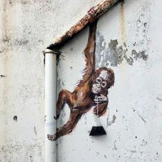 street art, location and artist unknown