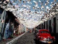 Cuba - bird decorations.