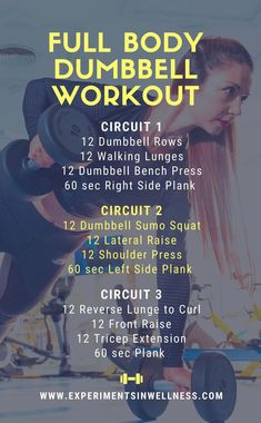 Home Weight Training, Home Weight Workout, Full Body Dumbbell Workout, Full Body Workout At Home, Easy At Home Workouts, Kickboxing Workout, Weight Training Workouts, Circuit Training, Dumbbell Workout For Beginners