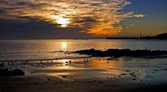 West Beach Sunrise by Carol Haberle