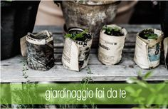 Creare dei vasi biodegradabili per le piantine