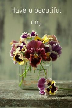 Have a beautiful day                                                                                                                                                      Mais