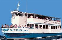 Captain Anderson's glass bottom boat tour and dolphin encounter - Panama City beach, Florida