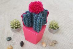 Mon petit cactus en tricot
