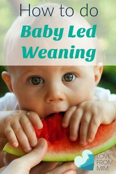 How to do Baby Led Weaning