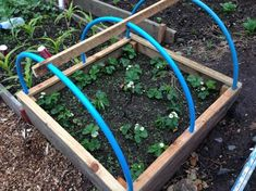 Mini Polytunnel / cloche ridge support.  Holes drilled for pipe to pass through.