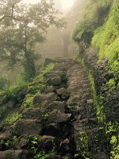 Tikona Fort, Forts in Maharashtra, Treks around Pune
