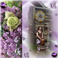 Lavender & Lilac Dreams