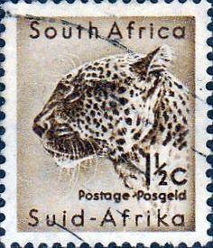 South Africa 1954 Wild Animals Warthog Fine Mint SG 151 Scott 200 Other African…
