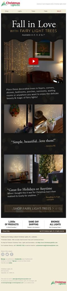 Fairy Lights In Trees, Beauty Magic, Waiting Rooms, Tree Lighting, Beautiful Love, Christmas Lights, How To Find Out, Delicate, Simple