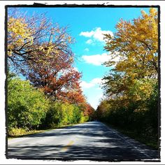 Cruising the highway in the #Fall