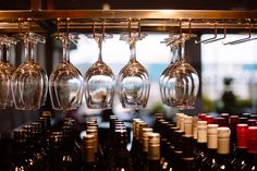 Melbourne restaurant   Wine   Bar