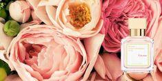 Fragrance du jour: Maison Francis Kurkdjian À la Rose. Gorgeous.
