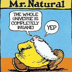 Natural (Fred Natural) is a comic book character created and drawn by counterculture and underground comix artist Robert Crumb. Robert Crumb, Comic Books Art, Comic Art, Fritz The Cat, Photo Facebook, Pop Art, Bd Comics, Art Graphique, Illustrations