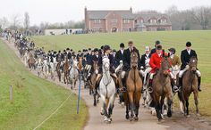 The Cottesmore Hunt -     The field leaving the meet at Ladywood.