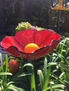 Red Birdbath Flower