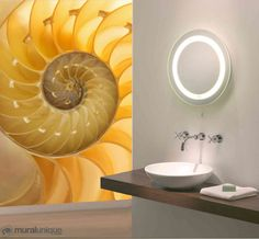 Nautilus : Great selection of unique and exclusive wallpaper murals. Our murals are prepasted, dry strippable and reusable. Prepasted Wallpaper, Wallpaper Online, Wall Murals, Wallpaper Murals, Florida Home, Nautilus, Designer Wallpaper, Decoration, Tapestry