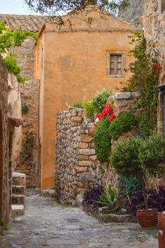 Details of Monemvasia ,Greece Click:Alexandra Koukouraki Follow me on instagram @alexandradts , #alexandradts#