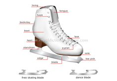 ... ice; figure skating is hard on the ankles so the skate provides
