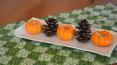 Busy planning your Thanksgiving meal? How about the decorations? Learn how easy it is to decorate using fall produce in this DIY decor project!