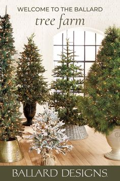 Welcome to the Ballard Designs tree farm. Shop indoor Christmas trees of all shapes, sizes, and styles. From pre-lit Christmas trees to beautiful flocked Christmas trees, find something your family will love year after year.