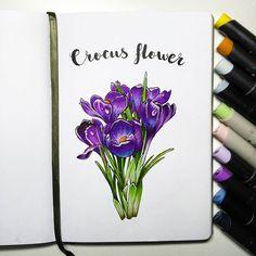 Не знаю можно еще выкладывать или время строго лимитированно...но я все равно буду рисовать цветы, т.к. хочется уже весны и солнышка #скетчмарафон_аромат_весны #скетчбук #скетчинг #leuchtturm1917 #markers #art_markers  #sketch #sketchbook #art #sketching