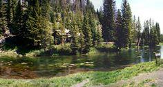 Big Springs Nature Hike