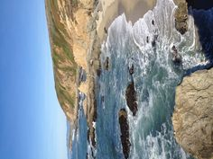 California Coastline - Bodega Bay--- favorite place ever!!