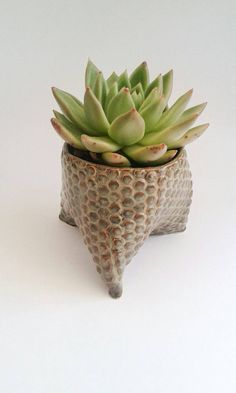 Check out this item in my Etsy shop https://www.etsy.com/uk/listing/291851893/ceramic-tripod-planter-or-trinketring