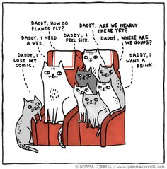 Gemma Correll A familiar scene if you are a cat parent (dog parents included ) Crazy Cat Lady, Crazy Cats, I Love Cats, Cool Cats, Funny Cats, Funny Animals, Cat Comics, Feeling Sick, All About Cats