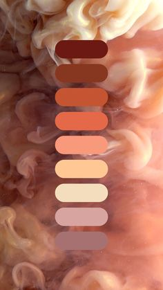 Muted shades of peach. Earth Colour Palette, Pastel Colour Palette, Colour Pallette, Colour Schemes, Peach Color Palettes, Peach Palette, Paint Drop, Shades Of Peach, Peach Colors