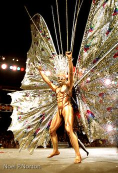 Papillon (1982), which consisted of 2,500 masqueraders wearing ten-foot butterfly wings in a huge meditation on the ephemeral nature of life, designed by Peter Minshall. A true masquerader.