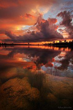 "crescentmoon06: ""Pine Glades Lake, Everglades National Park, Florida """