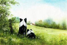 Summer meadow-Border Collies-watercolour