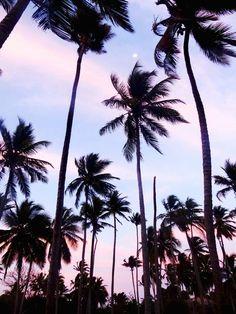 Blog voyage en Colombie - Archipel San Bernardo et Mucura, un coin de paradis !