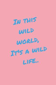 wild life lyrics