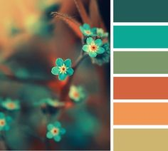 50 Orange and Blue Decor Inspiration - Blue is opposite orange on the color wheel, therefore its a best color to use whenever you desire a contrasting appearance. The color blue has a calm. by Joey Colour Pallette, Colour Schemes, Color Patterns, Color Combos, Summer Colour Palette, Best Color Combinations, Sunset Color Palette, Nature Color Palette, Summer Colors