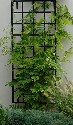 """28"""" wide Wall Trellis lends itself to many architectural styles. Measure 28"""" W x 5"""