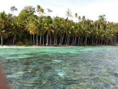 Taupan island, one of the best spot for snorkeling & diving.