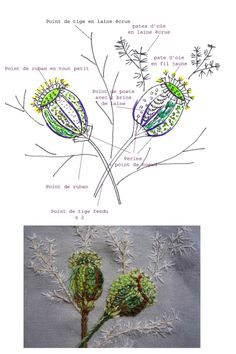 facile cecile -pods sketched and stitched