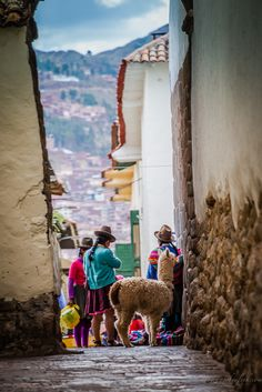 life in the streets of Cusco, Peru 10 things I have learned from travelling…