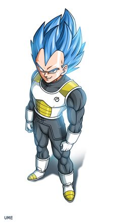 SSGSSJ/SSB Vegeta. Gotta be honest but I only began to like him after the Cell saga. It's kinda cool if the hair colour resembles the intensity of the flames. I guess the flame is like a symbolism of the Saiyans passion for fighting.