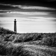 The path to the lighthouse.  ( Explored)